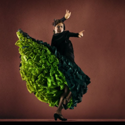 Category Flamenco dance classes including genres such as Flamenco
